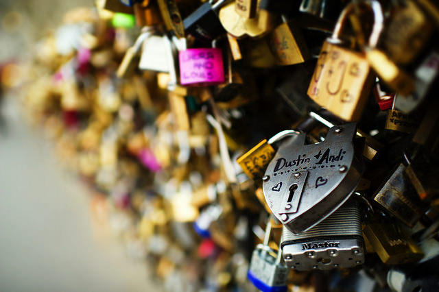 Cybersecurity and the Paris Attacks: The Encryption Debate